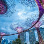 Cómo administrar su reputación en medio de noticias falsas en Singapur
